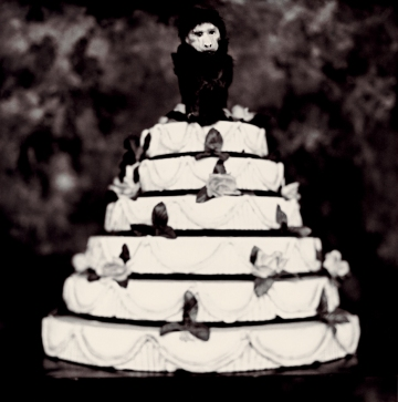 Monkey on a Wedding Cake, 1997