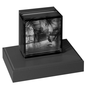 Display case with photo sculpture