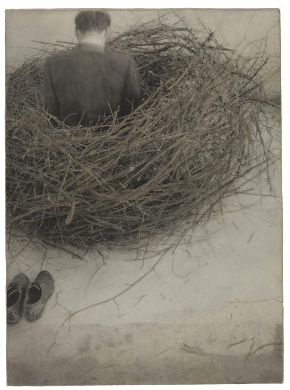 Study of Nest, 1994