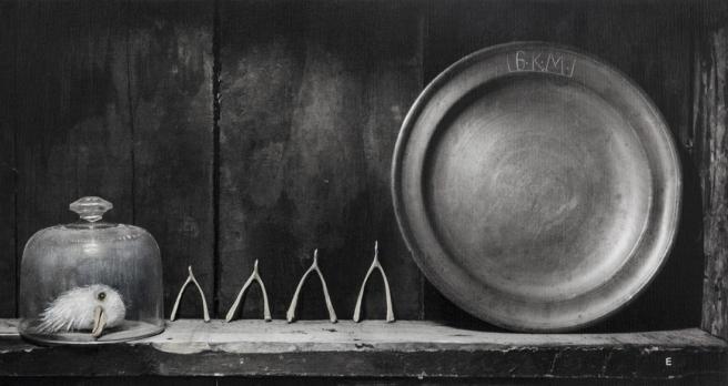 Wish Bones, 2014 © Elizabeth Ernst