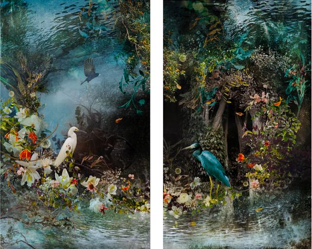 Reflection, 2014 © Ysabel LeMay