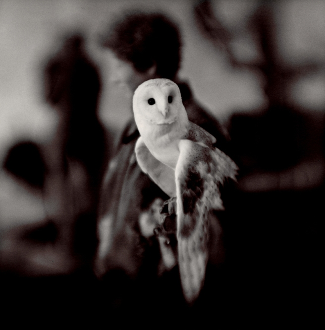 White Owl, 2004 © Keith Carter