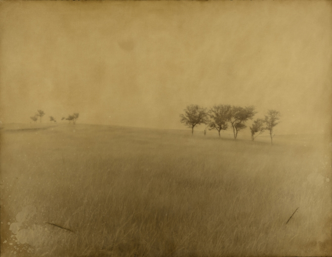 14 Trees, Wounded Knee, SD, 2003 © Jack Spencer