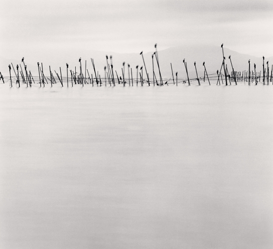 Birds on Poles, Biwa Lake, Honshu, Japan, 2001 © Michael Kenna