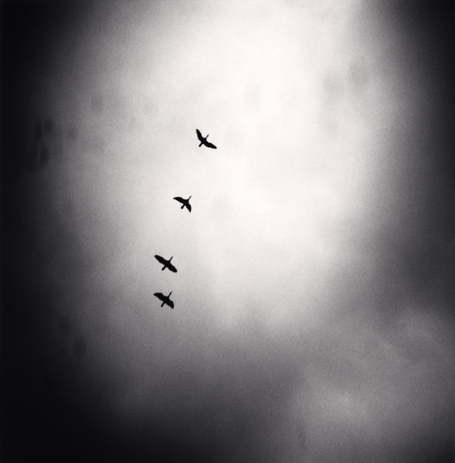 Four Birds Flying, Tbilisi, Georgia, 2008 © Michael Kenna