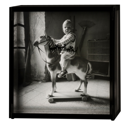 Case with Horses, 2000 © Doug Prince,