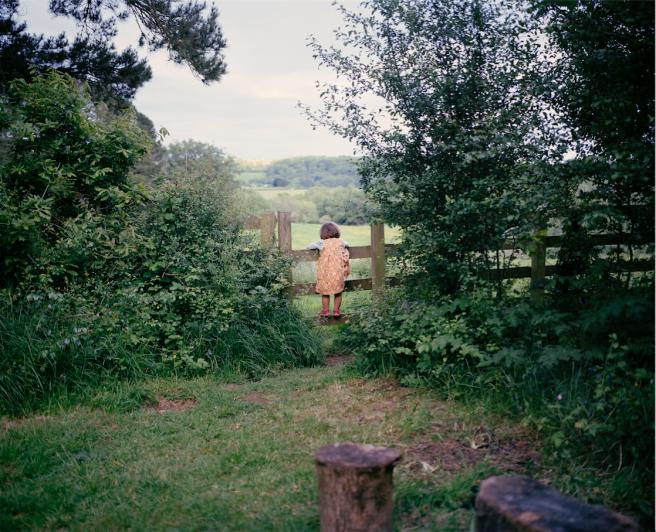 Garden Gate, Summer, 2014