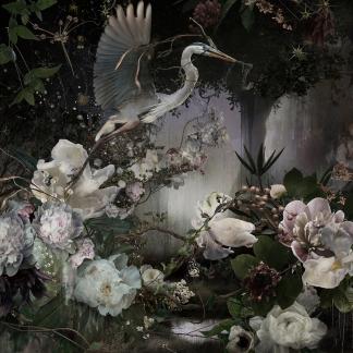Eden I, 2017 © Ysabel LeMay