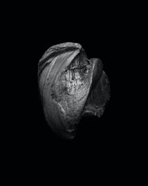 Bullet #1, 2016 © Garrett O. Hansen