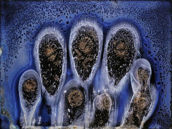 Finger Prints #6183, 2018 © Michael Koerner