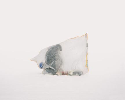 Untitled, 2017 © Aleksey Kondratyev