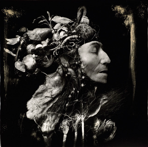 Image: Joel-Peter Witkin, Harvest, 1984. A black and white photograph showing a face of a figure, in profile. Where the rest of the head and shoulder would be, are plants and other unidentifiable organic material. The figures eye is closed and they face the right edge of the frame.