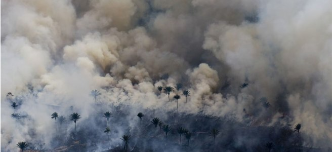 Image: An aerial photograph of the Amazon Rainforest burning. Most of the composition shows gray smoke above treetops.