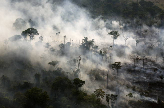 Image: Amazon clearing fire (#87), 2007 by Daniel Beltrá. An aerial photograph of the rainforest burning.