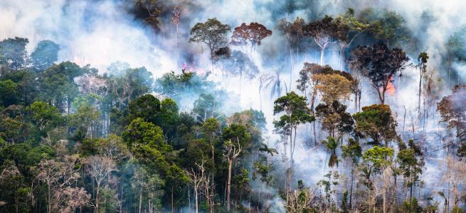 Image: Daniel Beltrá, Amazon rainforest burns (#260), 2018. An aerial view of the Amazonn Rainforest on fire.