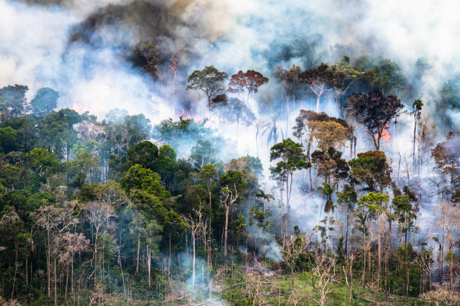 Image: Daniel Beltrá, Amazon rainforest burns (#260), 2018. An aerial view of the Amazonn Rainforest on fire.